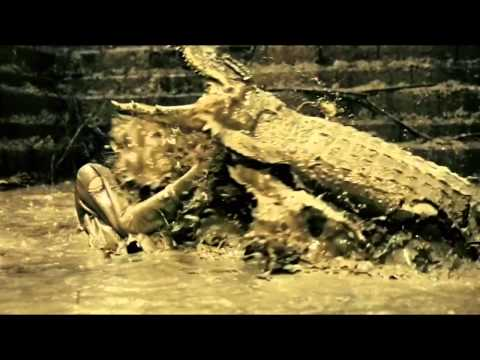 Ong Bak 2: Animal Planet video