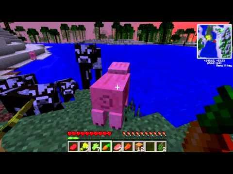Minecraft y nosotros, una buena mezcla para reir!