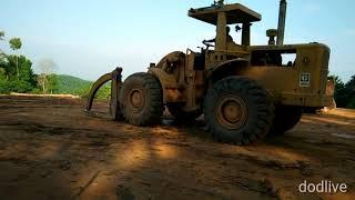 Rainforest Log Site   Matau Balak