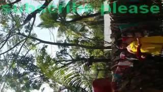polytechnic student kapor khula kamne gosol korsa