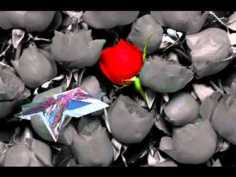 Amai Chere Kothai Jaabi - (Zooel  ft Kona)