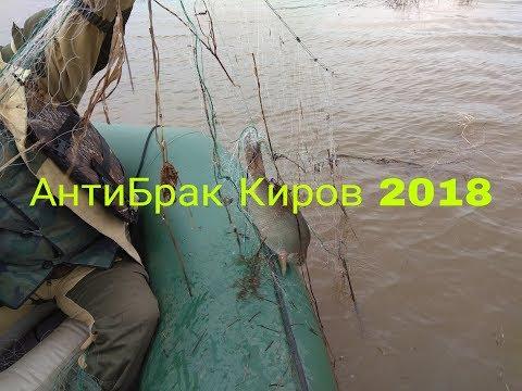 АнтиБрак Киров 2018