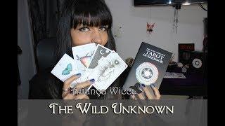 THE WILD UNKNOWN : TUDO SOBRE O TAROT, ONDE COMPREI E COMO JOGAR.