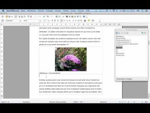 7 Seminararbeit formatieren mit OpenOffice 4 - Teil 7: Abbildungen