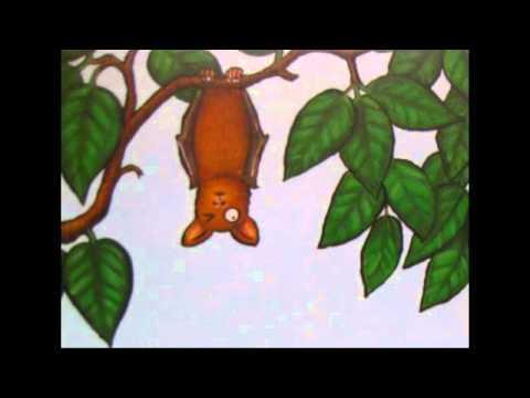 Monkey Puzzle Youtube