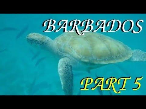 Barbados- Part 5/5