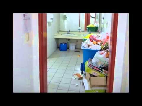 Студенческое мужское общежитие и дикие животные в Корее