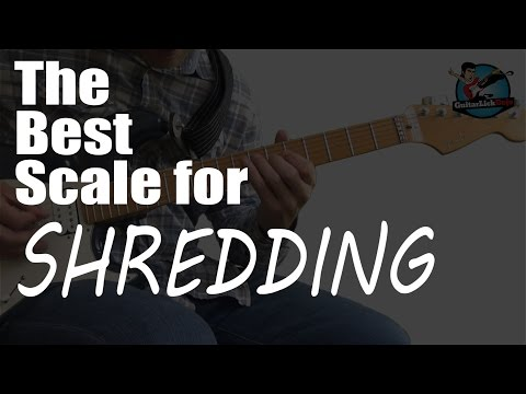 The Best Scale For Shredding