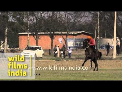Man displays his horse riding skills during Kila Raipur Sports Festival