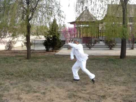 Master Wu - Bagua form Image 1