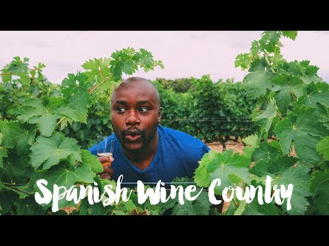 A Trip To La Rioja And The Spanish Basque Country!