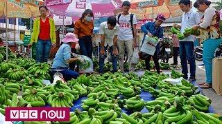 Đổ xô trồng cây ăn trái dù chưa biết bán cho ai | VTC1