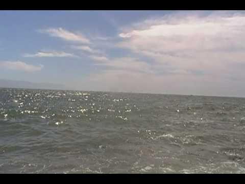 Océano Pacifico horas depués del Tsunami