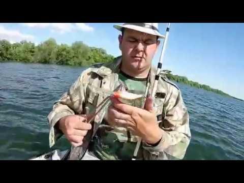 рыбалка в богучаре на дону