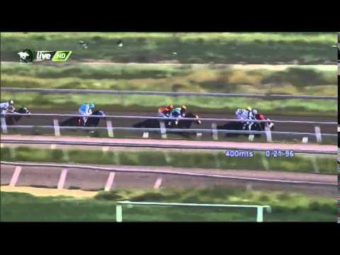 Vidéo de la course PMU PREMIO ZIZOU H.