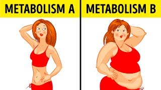 What theMetabolic Diet Isand Why ItWorks for Anyone