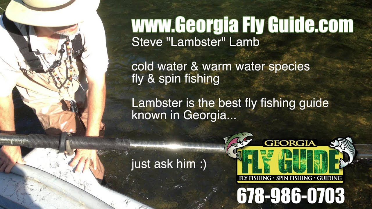 Lambster fly fishing blueridge georgia toccoa river for Georgia out of state fishing license