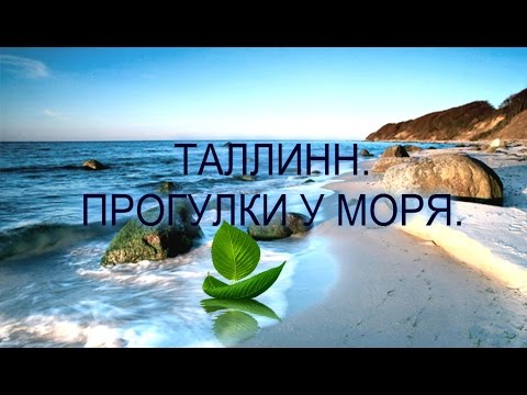 Красота Балтийского моря. Заряд энергии и позитива.