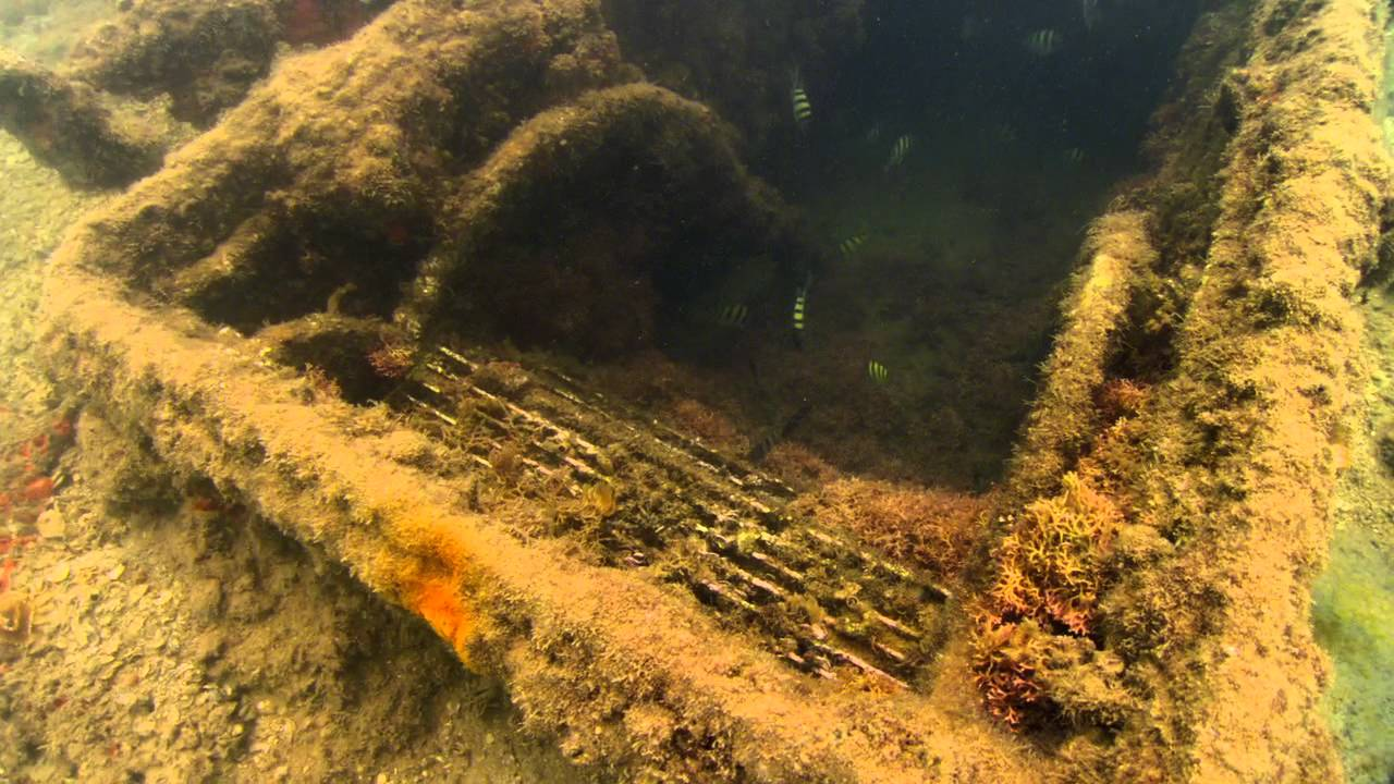 Uss Arizona Human Remains Underwater View of the...