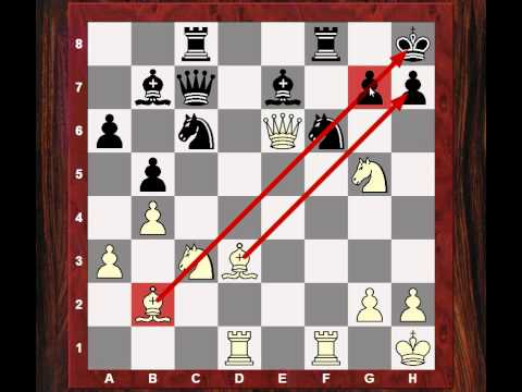 Winning Exchange: Instructive Chess Game: Winning the exchange (battle) but not winning the War!