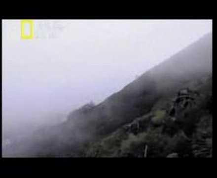 Mayday:Catastrofe en Tenerife(1/5)Catastrofes Aereas