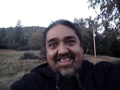 Yosemitebear Mountain Wildlife Fall 09 Video