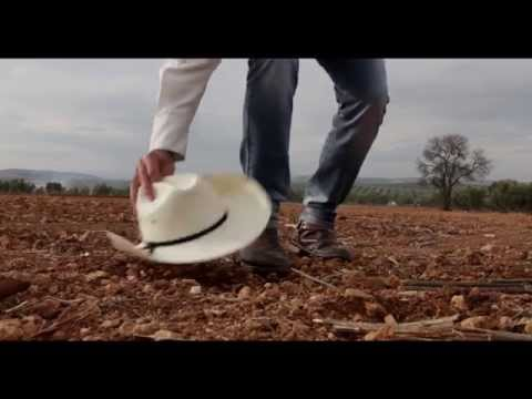 Tierra Fértil- Carlos López