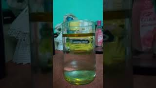 Science experiment by Anurag Dhar( water and oil). VC - Raj Das