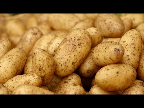 How to Grow Potatoes Anywhere | At Home With P. Allen Smith