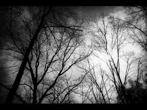 Shining - Langtar Bort Fran Mitt Hjarta
