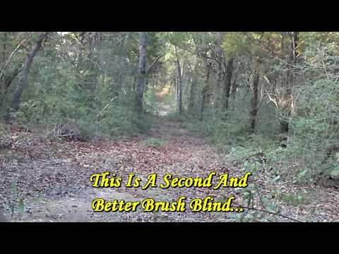 Texas Bow Hunting Whitetail Deer 2009: Hunt 3