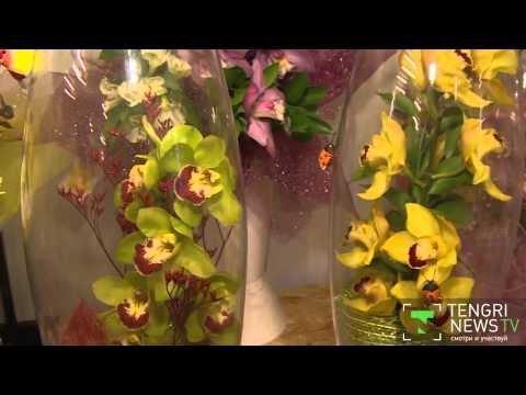 Flower boom in Kazakhstan - Spring is in the air
