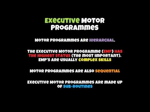 AS PE Acq Motor Programmes