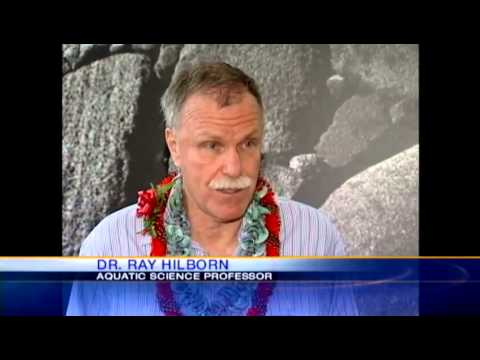 Could fishing competition affect industry in Hawaii?