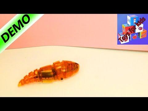 HEXBUG LARVA unboxing   Disgusting crawling robot larva   Demo