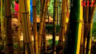 Choom Loon Honth Tere HD 1080p RIZ.