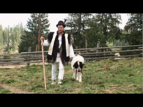 Calin Brateanu - Cantec de ciobanie HDV (2009)