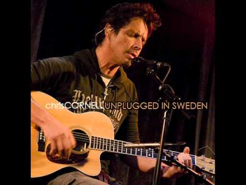 Chris Cornell - Whats So Funny Bout Peace Love And Understanding