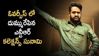 Huge Collections For Ntr Jai Lava Kusa In Overseas