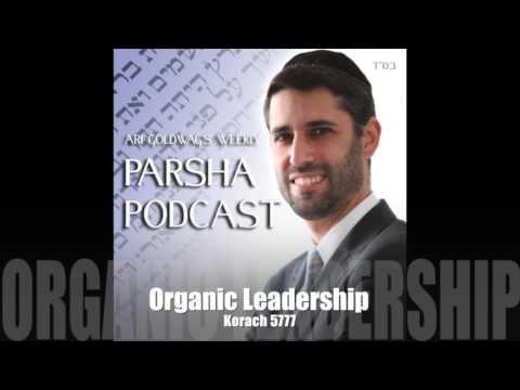 Ari Goldwag - Korach - Organic Leadership