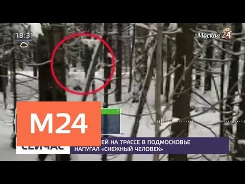 Снежный человек спровоцировал аварию в Подмосковье - Москва 24