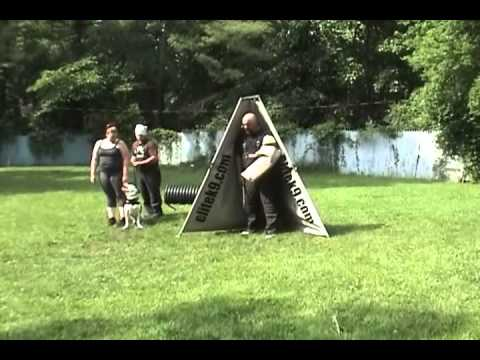 Schutzhund Training--Memorial Day Weekend 2012
