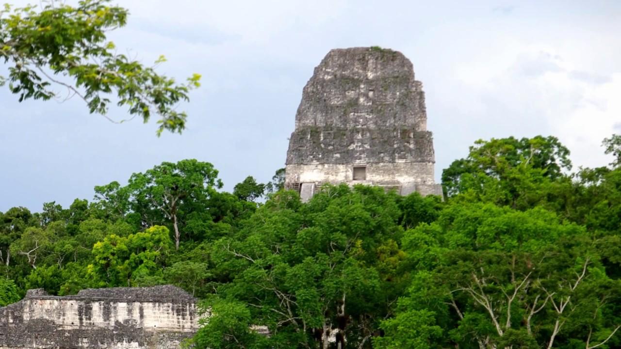 Tikal Guatemala hd Tikal Guatemala hd