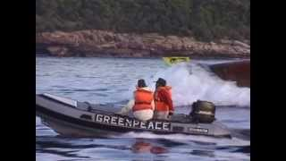 Greenpeace Rainforest Action Raw footage 1995