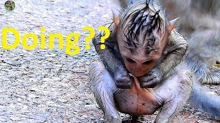 Oh God , Too small Timo very sad get ant bite | Pity Tiny Timo cry cry call mom Tima help |