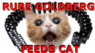 Cat Feeds Itself with Rube Goldberg - Genius Kitty