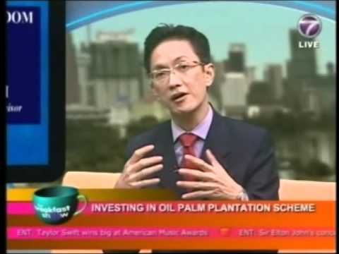 Investing in Oil Palm Plantation Investment Scheme