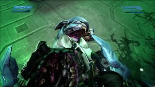 Halo 1 - Secret Mangled Elite Bodies (REVISITED)