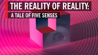 The Reality of Reality: A Tale of Five Senses