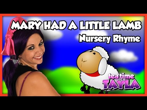 MARY HAD A LITTLE LAMB, SONGS FOR KIDS ~ Tea Time with Tayla